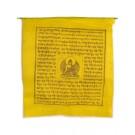 Prayerflags  Medicine Buddha (25 flags) 650 cm P
