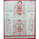 Tibetan Medicine Yoga Thangka no. 7 - 40 x 49cm