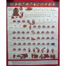 Tibetan Medicine Yoga Thangka no. 8 - 40 x 49cm