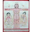 Tibetan Medicine Yoga Thangka no. 6 - 40 x 49cm